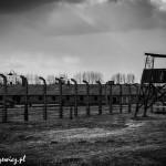 Auschwitz_001