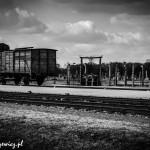 Auschwitz_003