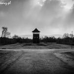 Auschwitz_004