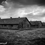 Auschwitz_005
