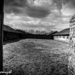 Auschwitz_006