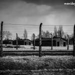 Auschwitz_007