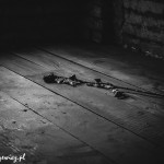 Auschwitz_011