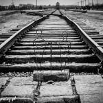 Auschwitz_012
