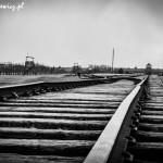 Auschwitz_013