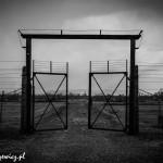 Auschwitz_016