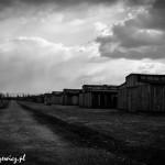 Auschwitz_019