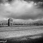 Auschwitz_022