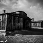 Auschwitz_023