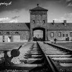 Auschwitz_028