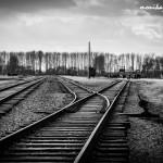 Auschwitz_029