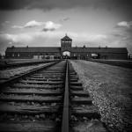 Auschwitz_030