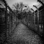 Auschwitz_033