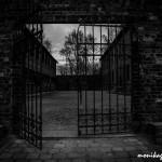 Auschwitz_036