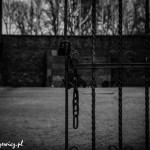 Auschwitz_037