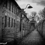Auschwitz_038