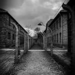 Auschwitz_039