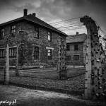 Auschwitz_040