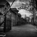Auschwitz_041